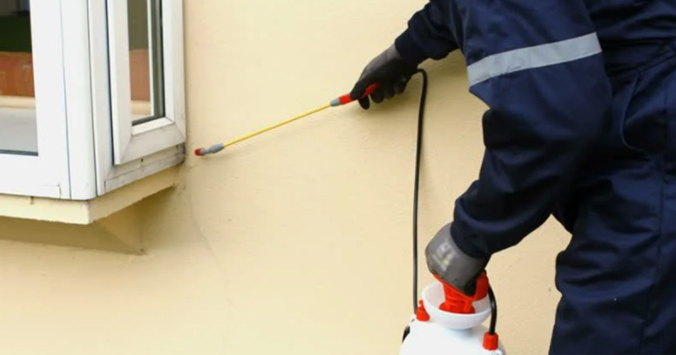Home Inspector Spraying To Prevent Termites And Other Pests