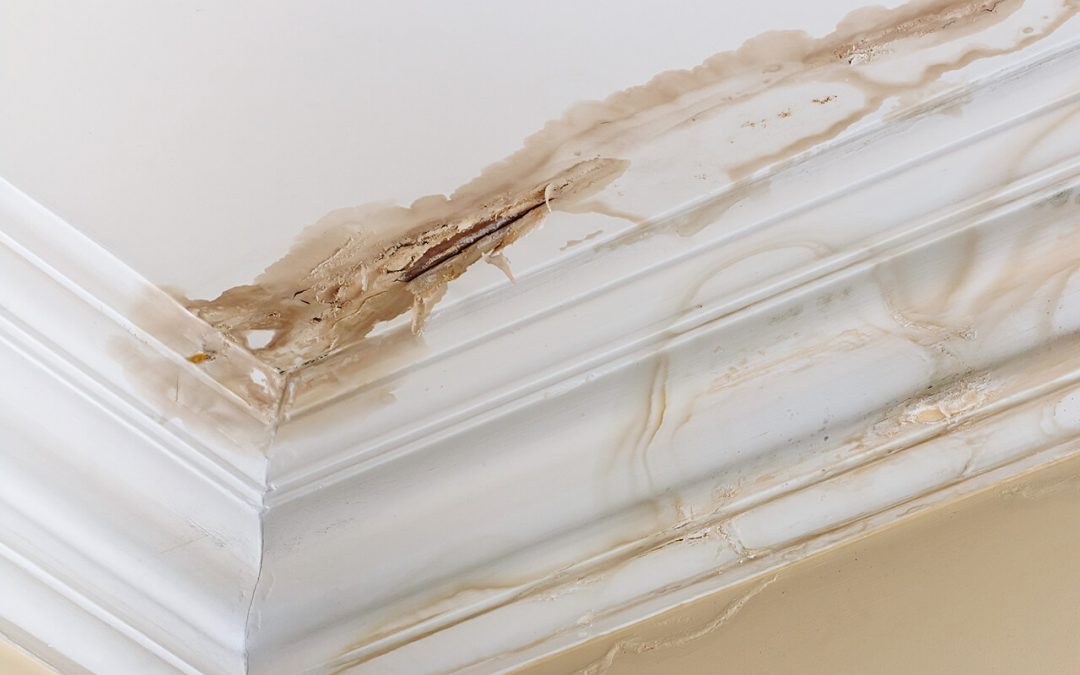 5 Places Water Damage Occurs in the Home